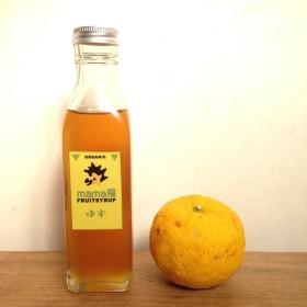 無農薬柚子 使用 酵素シロップ