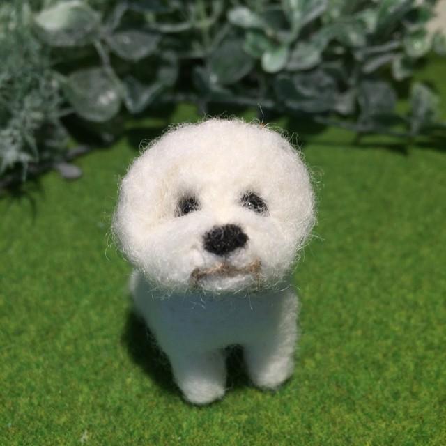 フェルト犬 ビションフリーゼ3 おすわりさん MW018