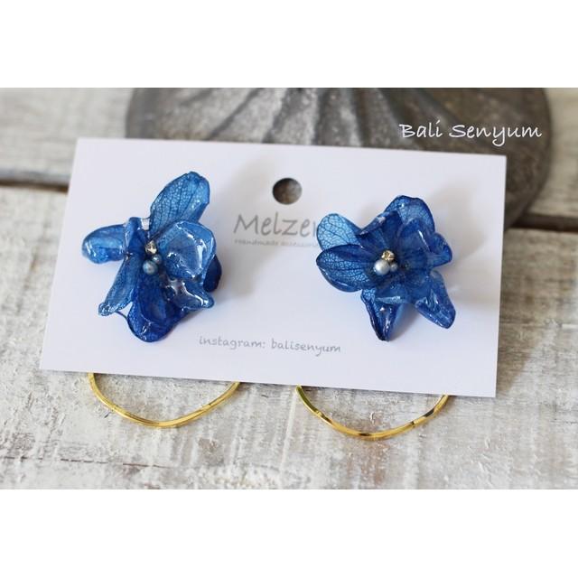 紫陽花ブリザーブドフラワー ブルーと丸フープピアス