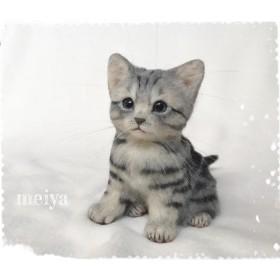 可愛い子猫 アメリカンショートヘア限定 Anzu様リクエスト品