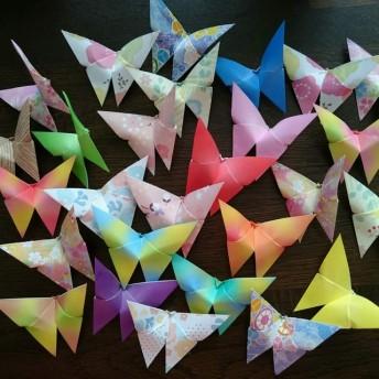 折り紙 蝶 チョウチョ