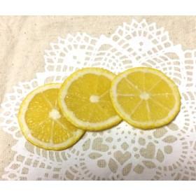 【デコパーツ】スライスレモン1個