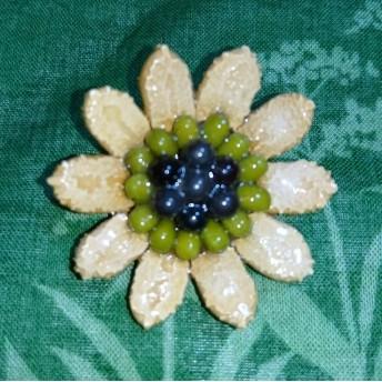 ★種の花★ ゴーヤと緑豆の種で作ったブローチ