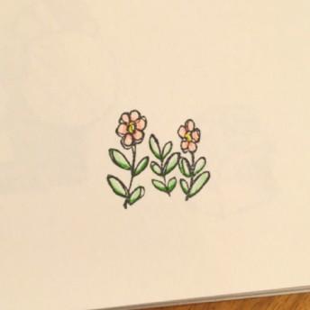 繊細にゆれる花