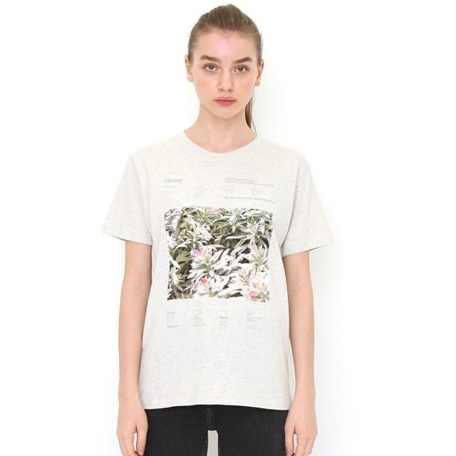 [マルイ] 【ユニセックス】ベーシックTシャツ/ボタニカルフォト01/グラニフ(graniph)