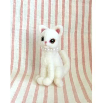 おすまし白猫