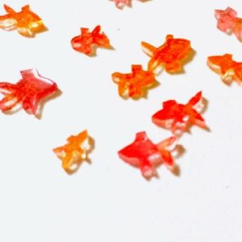 紅色金魚 と朱色金魚