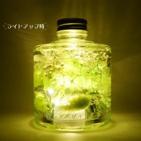 ハーバリウム「物語の始まり」LED付き 3