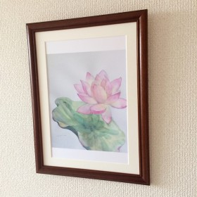【複製・A4】蓮の花の水彩画「さめざらましを」