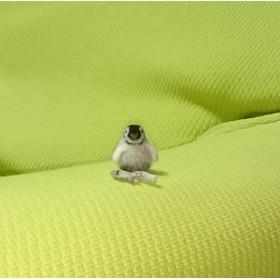 待て! babyペンギン 羊毛フェルト