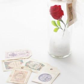大切な方に一輪のバラを 美女と野獣に想いをこめて. バラのボトルランプ