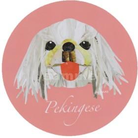 ペキニーズ/白2《犬種名ステッカー/小型犬》