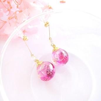 紫陽花ハーバリウムのイヤリング/ピアス(ピンク)