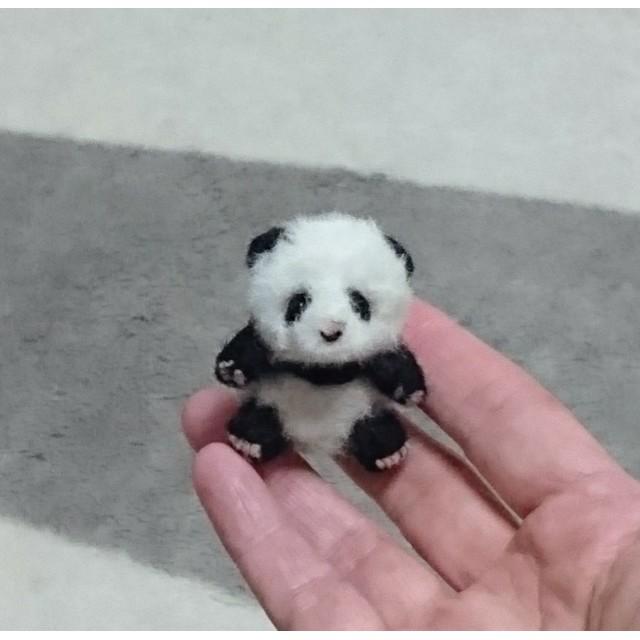 babyパンダ 羊毛フェルト