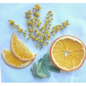 【再販】 ミモザ&オレンジ ドライフラワー