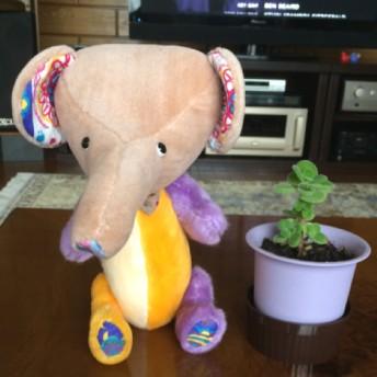 小象のナナ