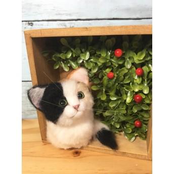 羊毛フェルト 香箱すわりの三毛猫 フレーム猫