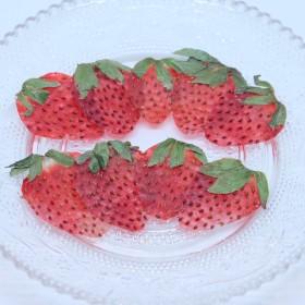 《送料無料》押しフルーツ 押し花 苺セット
