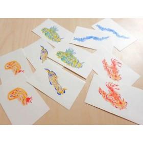 水彩画ウミウシメッセージカード