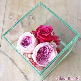 Glass Box M purple