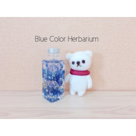 [再販] 夜空ブルー色 ハーバリウム