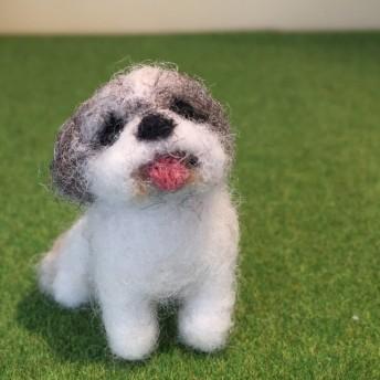 フェルト犬 シーズー MW045