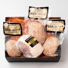 枕崎産黒豚 鹿籠豚ボンレスハム&ハンバーグ セット