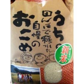 令和元年度兵庫県産ミルキークイーン(玄米 5kg)