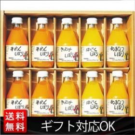 内祝い お返し 飲料 伊藤農園 100%ピュアジュース10本ギフトセット 50710g
