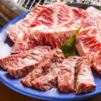 焼肉用(やきにく/焼き肉焼き肉セット) ロース500g 宮崎県産 黒毛和牛 EMO牛(有田牛) 冷凍 珍味のお試し・おためしに 簡易包装 訳あり