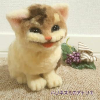 三毛猫 仔猫ちゃん