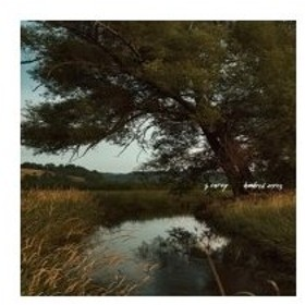 S. Carey / Hundred Acres 輸入盤 〔CD〕