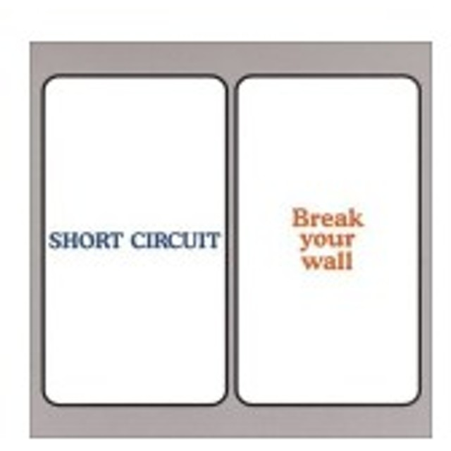 BREAK YOUR WALL 中古