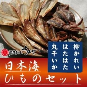 日本海干物セット 3種詰め合わせ(柳かれい/はたはた醤油干/丸干しいか) ひもの ギフト