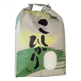 8月20日から新米出荷【2019年産】高知県産 コシヒカリ約5kg