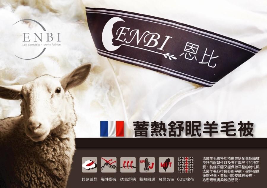 法國頂級小羊毛眠柔被