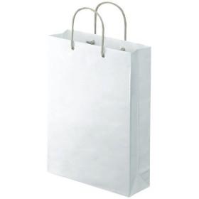 アスクル 樹脂カバー付き 手提げ紙袋 ホワイト L 1袋(10枚入)