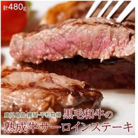 肉 牛 鹿児島県産 黒毛和牛 熟成サーロイン ステーキ用 3枚入り 480g  送料無料