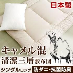 日本製 冬暖かく、夏は涼しく キャメル混 三層敷布団 シングル ロング 防ダニ 防臭 抗菌 シングル 布団 国産 敷き布団