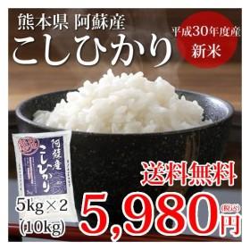 こしひかり 米 送料無料 10kg 5kgx2 30年産 新米 熊本県阿蘇産 地域限定米 お米 新米 こめ ひのひかり[Foody's]