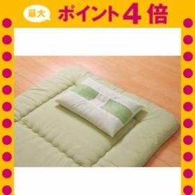 ピロー ヒバエッセンス練り込みパイプ使用 『ひばパイプ枕』 約35×50cm [13]