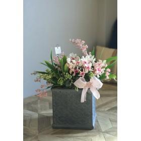 【1点もの】B 室内で楽しむシクラメン冬桜と香るオンシジューム寄せ植え