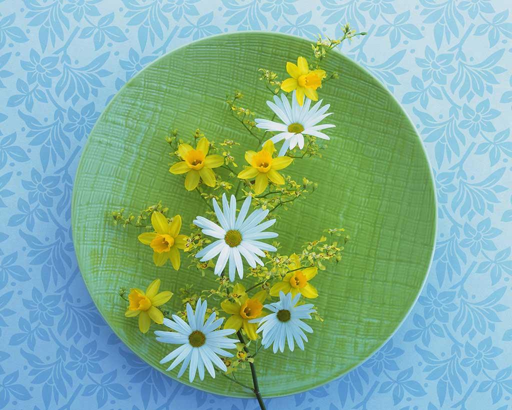 プレートと花