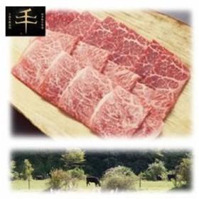 【送料無料】TYM-600 千屋牛「A5ランク」焼き肉用(モモ肩)肉 600g (TYM600)