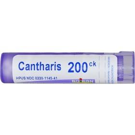 Cantharis(カンタリス)、200CK、約80ペレット
