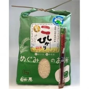 【白米5kg+野菜箸1膳セット】 福井県産 特別栽培米こしひかり 若狭の恵
