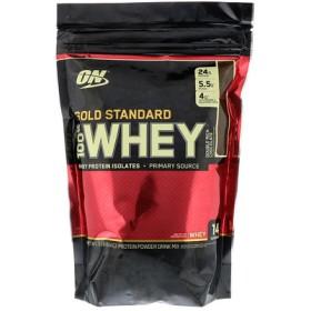 ゴールドスタンダード100% ホエイ、 ダブル リッチ チョコレート、 1 lb (454 g)