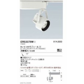 遠藤照明 ERS3379W LEDZ Rs series スポットライト