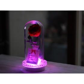 LEDライトメッセージ入り美女と野獣のボトルフラワー