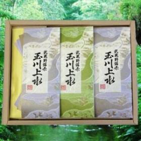 鈴木園 【送料無料】SZK-T-10 狭山茶「玉川上水」詰め合わせ(紫・草)100g×3(300g) (SZKT10)